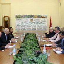 ՀՀ գյուղատնտեսության նախարարն ընդունել է Իրավաբանների հայկական ասոցիացիայի ներկայացուցիչներին